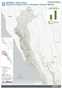 Mangrove Coverage Evolution in Maungdaw Township 1988-2015