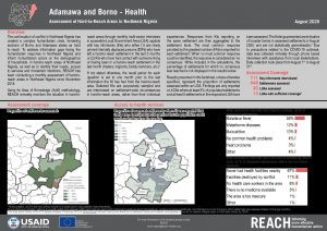 Hard-to-Reach, Health, Factsheet Borno and Adamawa state, Nigeria, August 2020