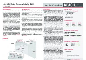 Libya Joint Market Monitoring Initiative Situation Overview - July 2020