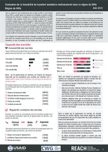 NER_Factsheet_Evaluation Cash Region Diffa_Juillet 2019