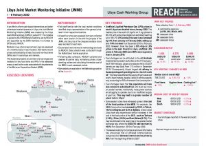 Joint Market Monitoring Initiative (JMMI) Libya, Situation Overview – February 2020