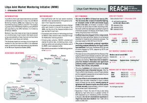 Joint Market Monitoring Initiative, Situation Overview - November 2019