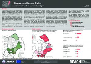 Shelter & Non-food Items Hard-to-Reach Situation Monitoring, Borno, Nigeria - July 2020
