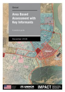 Area-Based Assessment with Key Informants
