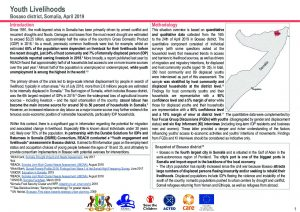 Bosaso Youth Livelihoods Assessment DSRIS