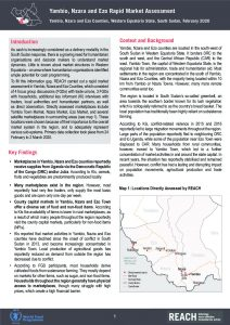 Yambio, Nzara and Ezo Rapid Market Assessment brief, South Sudan - February 2020
