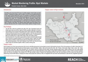 SSD_Factsheet_Market Monitoring Profile_Nyal_November 2016