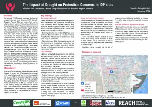 REACH_SOM_Factsheet_Protection_Assessment_Midnimo IDP Site_Banadir