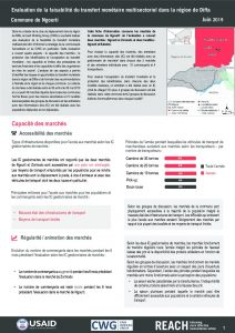 NER_Factsheet_Evaluation Cash Ngourti_Juillet 2019
