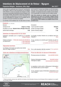 NER_Factsheet_Evaluation Protection, Intentions de Déplacement et de Retour, Ngagam, Réfugiés_Avril 2017