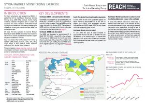 syr_situation_overview_market_monitoring_exercise_ne_june_2019