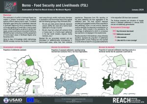 Hard-to-Reach FSL Factsheet in Borno State, Nigeria, January 2020