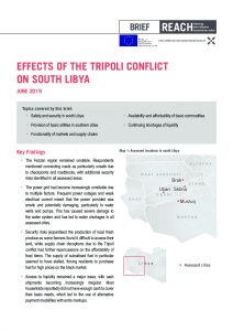 LBY_Brief_Effects of the Tripoli Conflict on South Libya Rapid Assessment_June 2019