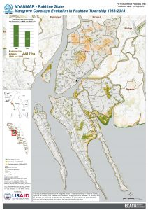 Mangrove Coverage Evolution in Pauktaw Township 1988-2015