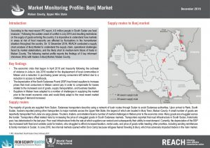 SSD_Factsheet_Market Monitoring Profile_Bunj_November 2016