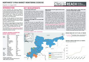 REACH Northwest Syria Market Monitoring Situation Overview, August 2020