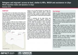 LBY_Situation Overview_Refugees and migrants' access to food, WASH, shelter and assistance in Libya_November 2018