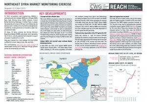 REACH Northeast Syria Market Monitoring Situation Overview, April 2020