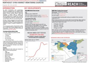 REACH SYR Northeast Situation Overview Market Monitoring July 2021