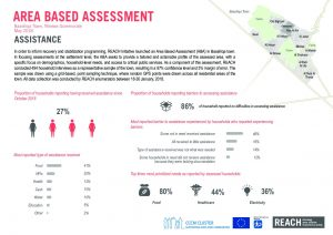 reach_irq_sector_factsheets_area_based_assessment_baashiqa_assistance
