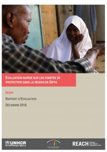 NER_Report_Evaluation Rapide sur les Comités de Protection à Diffa_December 2016