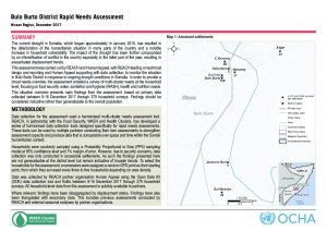 SOM_Situation Overview_Bulo Burto Rapid Needs Assessment_December 2017