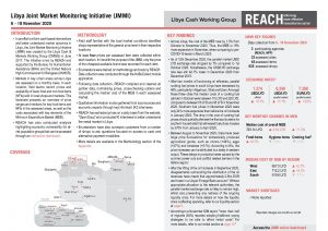 Libya Joint Market Monitoring Initiative, Situation overview, November 2020