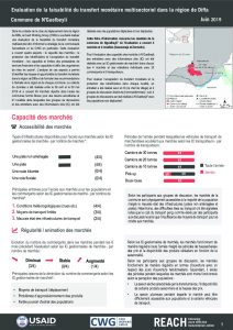 NER_Factsheet_Evaluation Cash Nguelbeyli_Juillet 2019