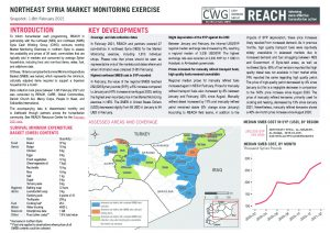 Northeast Syria Market Monitoring Situation Overview - February 2021