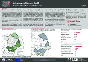 Health Hard-to-Reach Situation Monitoring, Borno, Nigeria - July 2020