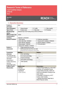 REACH_SYR_Terms of Reference_Cash Feasibility Analysis_May 2021