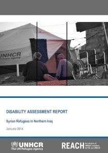 KRG - Disability Assessment Report - January 2014