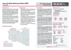 LYB_Situation Overview_Joint Martket Monitoring Initiative (JMMI)_June 2018