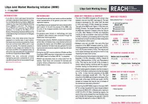 REACH LBY Situation overview JMMI July 2021