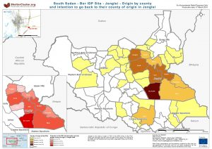 SSD - Bor IDP Site - Jonglei - Origin by county and intention to go back to their county of origin in Jonglei