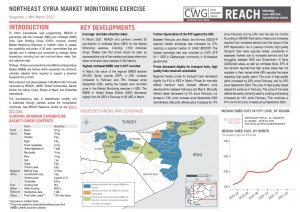 Northeast Syria Market Monitoring Situation Overview – March 2021