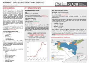 Northeast Syria Market Monitoring Situation Overview, June 2021
