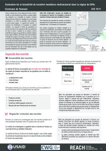 NER_Factsheet_Evaluation Cash Toumour_Juillet 2019
