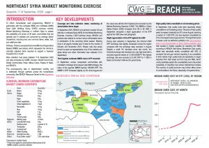 Northeast Syria Market Monitoring Situation Overview, September 2020