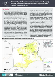 Compounding shocks and consequences for food security, coping capacity, and social stratification in Leer and Mayendit counties - June 2021