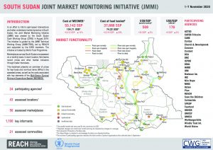 Joint Market Monitoring Initiative (JMMI) Factsheet, South Sudan – November 2020