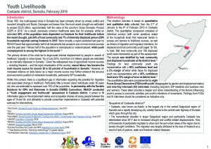 DSIRS Youth livelihoods assessment in Cadaado, Somalia - July 2019