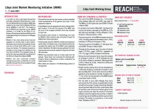 REACH LBY Situation overview JMMI June 2021